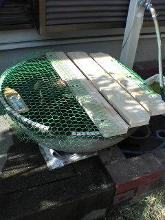 金魚ばちフェンス製作
