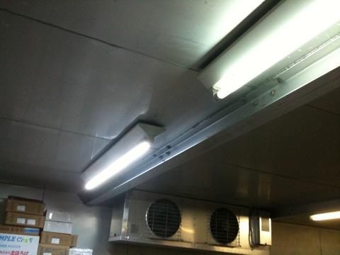 LED蛍光灯を冷蔵庫に付けてみた